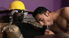 Bending over, the white stud has the black guy banging his ass from behind