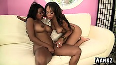Stacked ebony lesbians surrender their hungry pussies to one another by the pool
