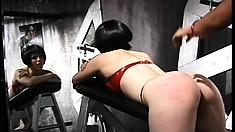 Beautiful girl Olivia likes punishing her sweet clumsy babe Lita