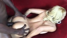 Buxom ebony girl with a marvelous booty feeds her desire for dark meat