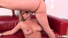 Slutty blonde Phyllisha Anne munches on his man meat then gets drilled