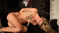 Gorgeous blonde hitchhiker ends up getting dominated and drilled hard