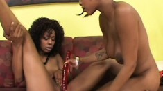 Foxy lesbians love their black pussy and toying until they cum