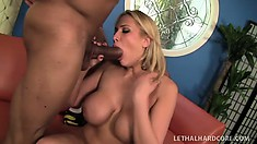 Delectable malkin with yummy hole Alanah Rae is licked twice