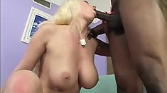 Busty blonde cougar has a black guy fucking her pussy until it gets filled with cum