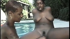 Horny black babes have a hardcore pool party with their toys
