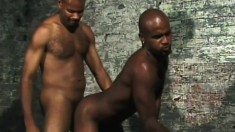 Gay black studs gobble up prick and bend over for ass fucking